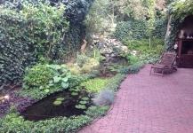 Project natuurlijke vijver braat makers van groenbeleving for Natuurlijke vijver maken